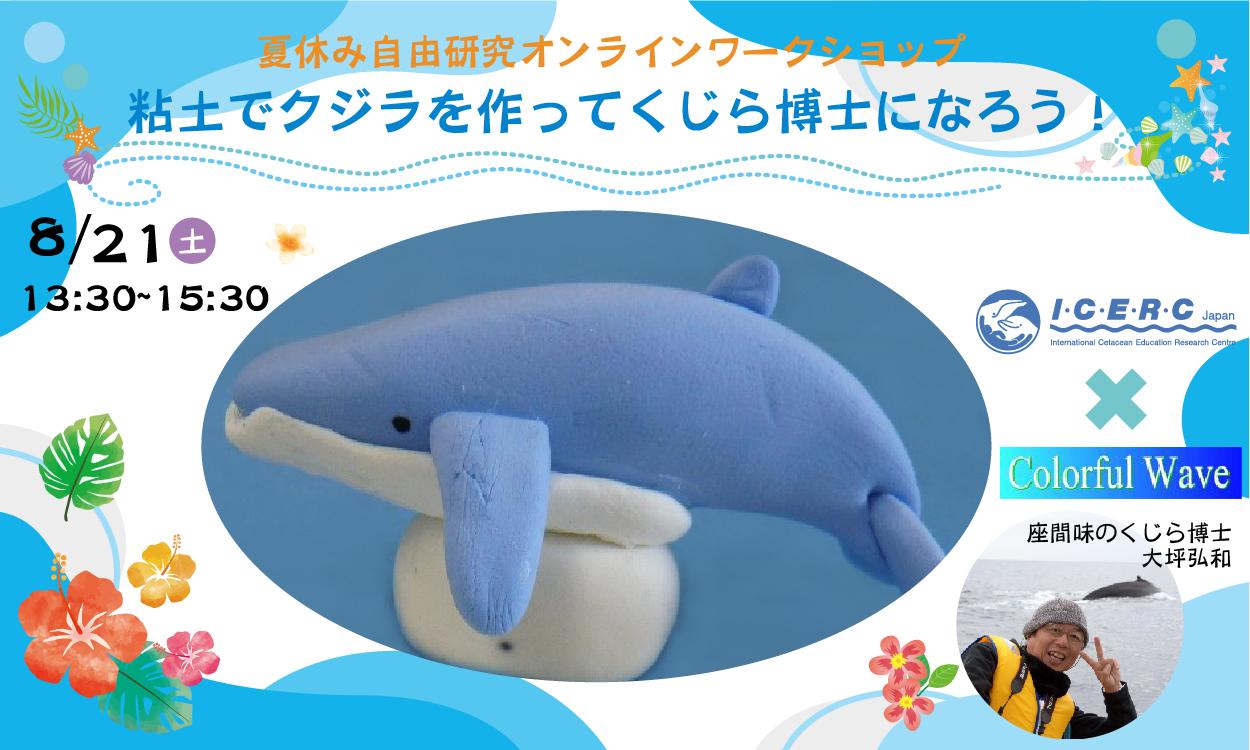 夏休み自由研究オンラインワークショップ「粘土でザトウクジラを作ってくじら博士になろう!」